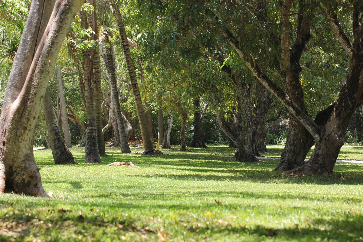 gardens-florida-fort-lauderdale