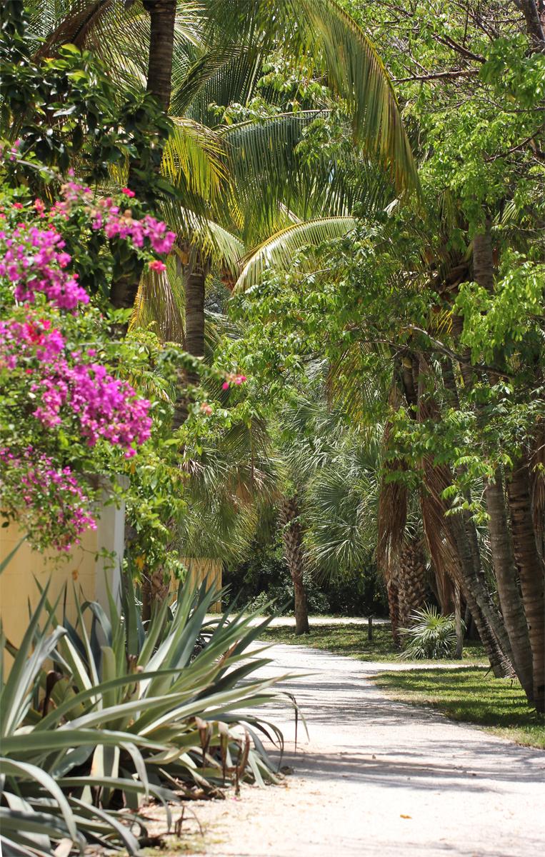 Bonnet House and Garden, Florida