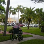 A resident wheels herself along the strolling path's series of outdoor spaces. A minimum five-foot path allows a wheelchair to turn 180 degrees while brick orientation and path color can help guide movement along the center of the path.