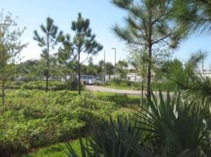 Restored grass/scrub areas surround the building.