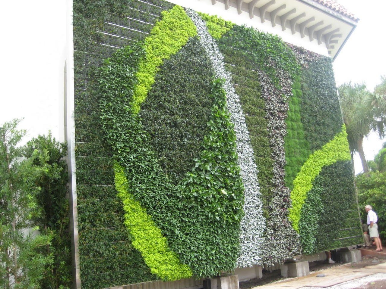 Green Wall In Palm Beach County Studio Sprout