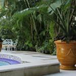 planters-Palm-Beach