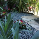 Palm Beach landscaping