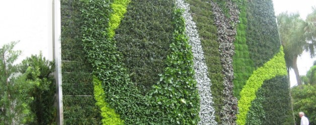 Green Wall in Palm Beach County!